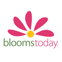 Bloomstoday